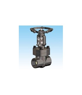 COMEVAL - Gate valves 800lbs