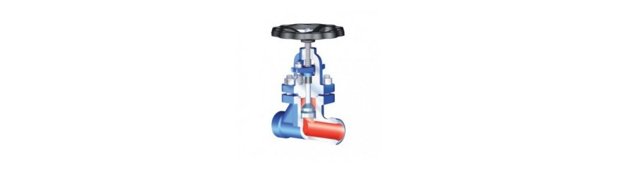 Gland Seal Valves